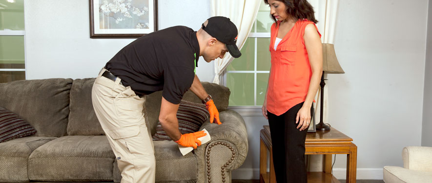 Wilmington, CA carpet upholstery cleaning